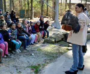 Wildlife Program in Amphitheater